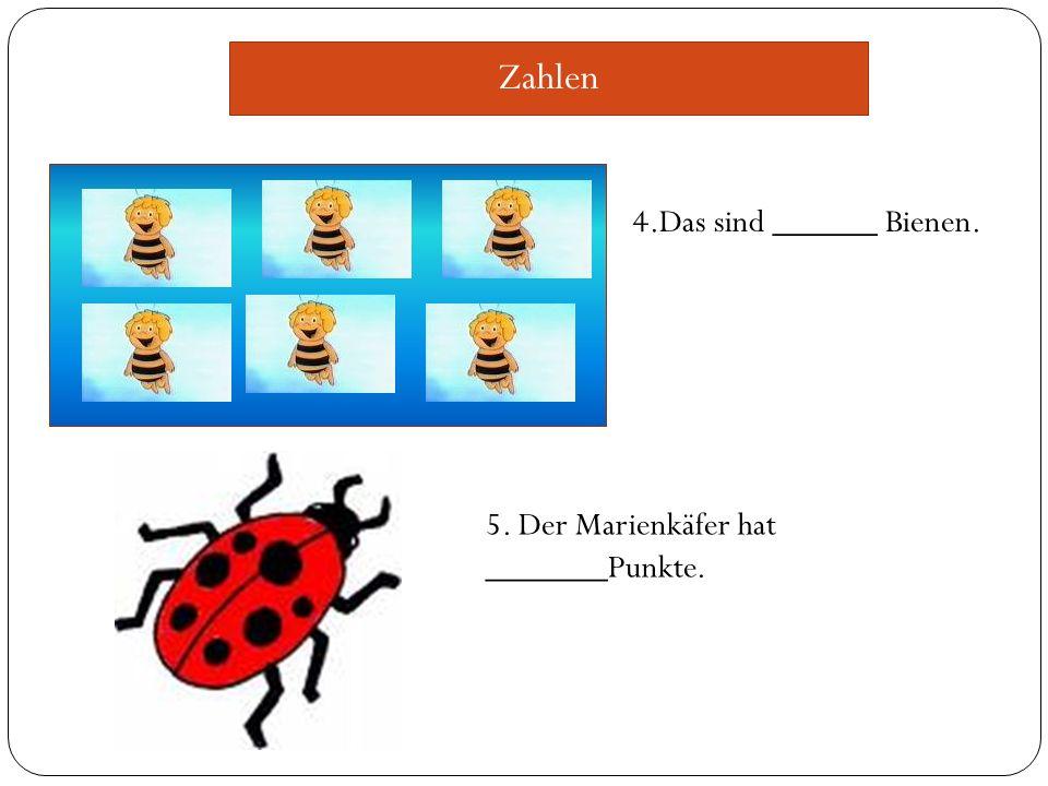 Zahlen 4.Das sind ______ Bienen. 5. Der Marienkäfer hat _______Punkte.