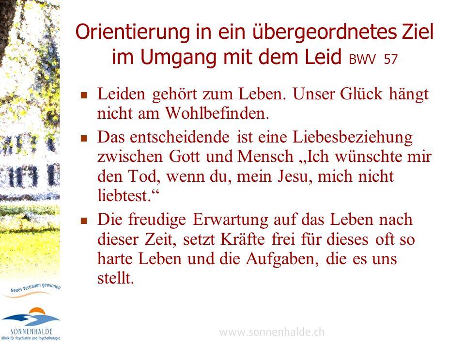 Orientierung in ein übergeordnetes Ziel im Umgang mit dem Leid BWV 57