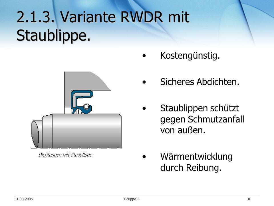 2.1.3. Variante RWDR mit Staublippe.