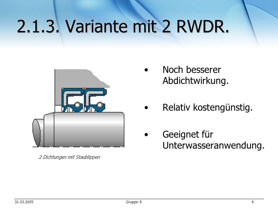 2.1.3. Variante mit 2 RWDR. Noch besserer Abdichtwirkung.