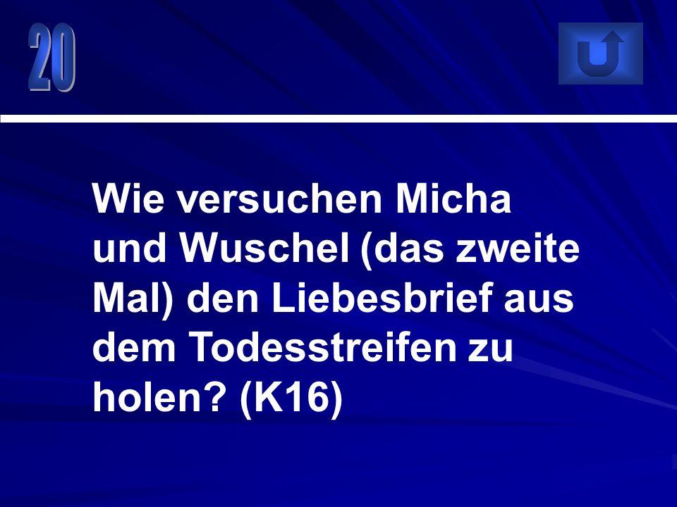 20 Wie versuchen Micha und Wuschel (das zweite Mal) den Liebesbrief aus dem Todesstreifen zu holen.