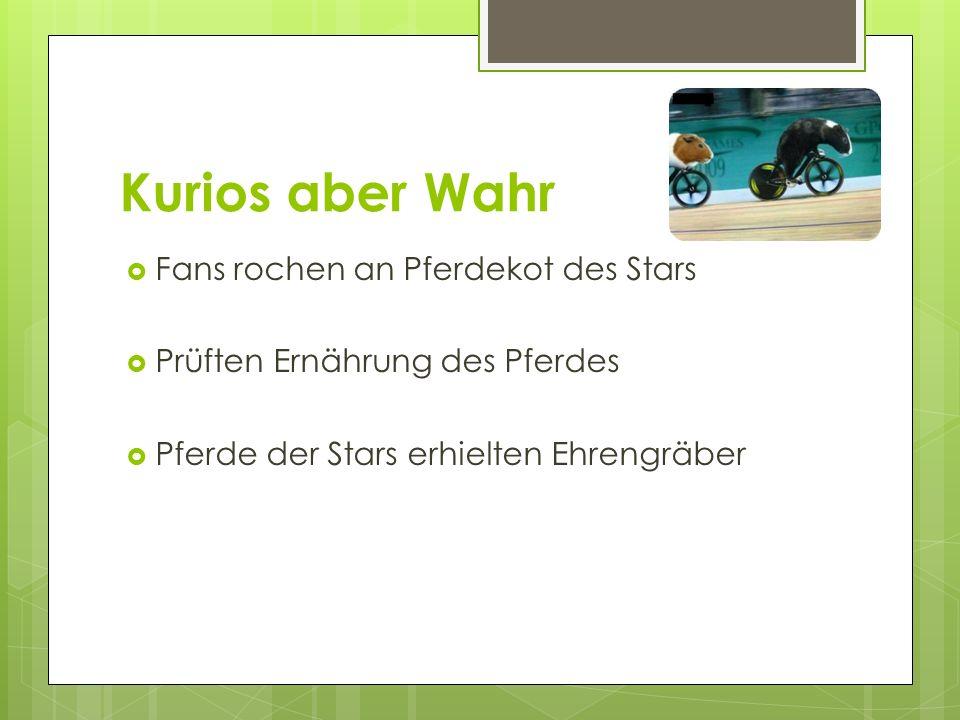 Kurios aber Wahr Fans rochen an Pferdekot des Stars
