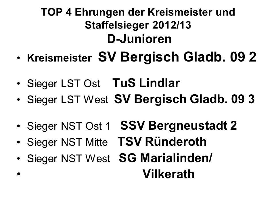 TOP 4 Ehrungen der Kreismeister und Staffelsieger 2012/13 D-Junioren