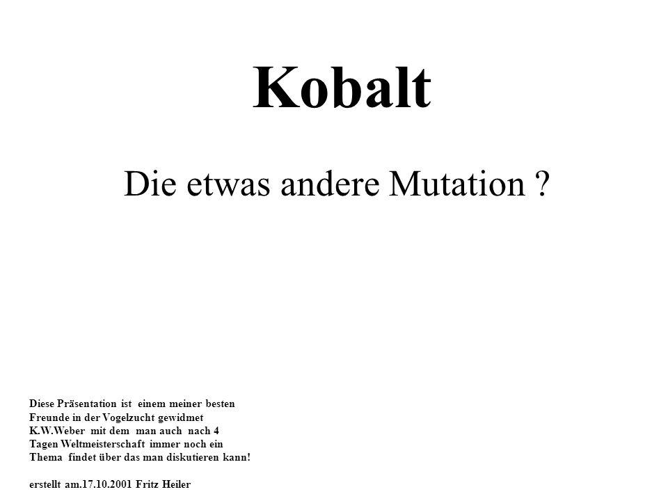 Kobalt Die etwas andere Mutation