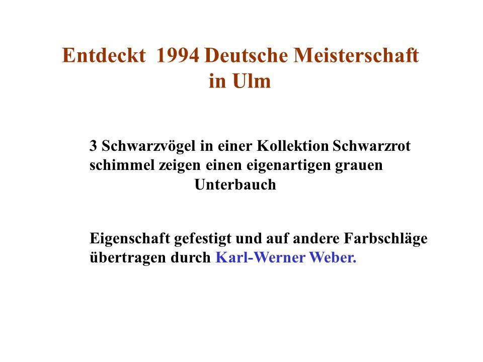 Entdeckt 1994 Deutsche Meisterschaft