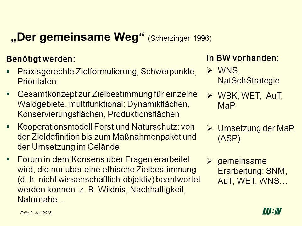 """""""Der gemeinsame Weg (Scherzinger 1996)"""