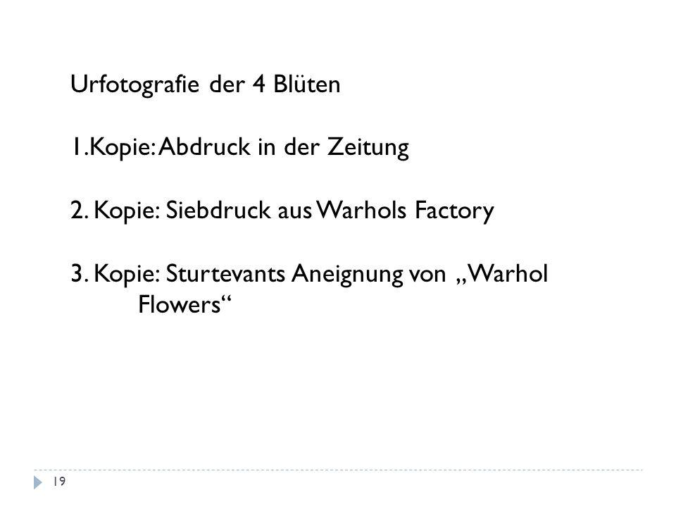 Urfotografie der 4 Blüten