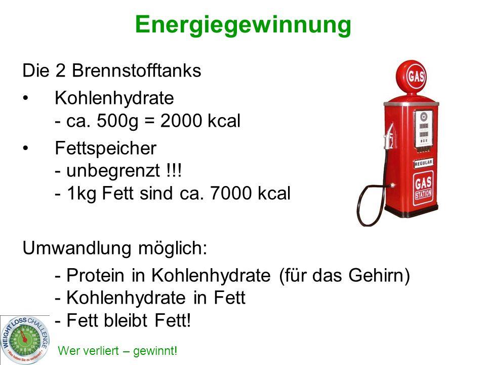 Energiegewinnung Die 2 Brennstofftanks