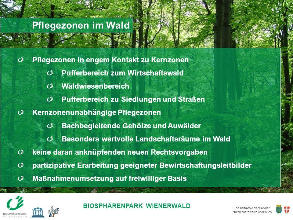 Pflegezonen im Wald Pflegezonen in engem Kontakt zu Kernzonen