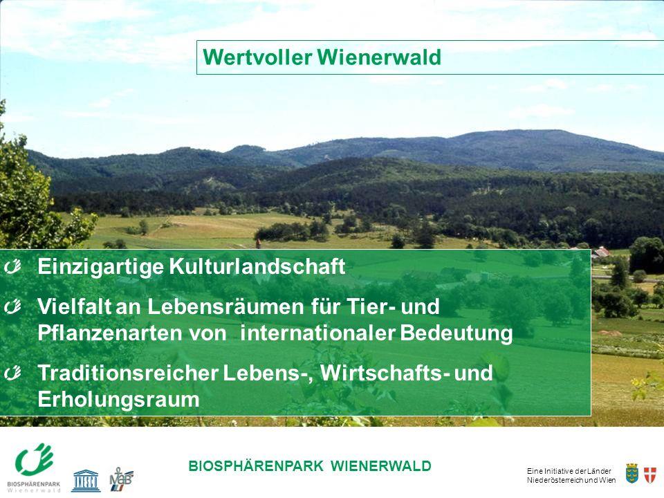 DIE ZUKUNFT LIEGT IN UNSERER HAND! Wertvoller Wienerwald