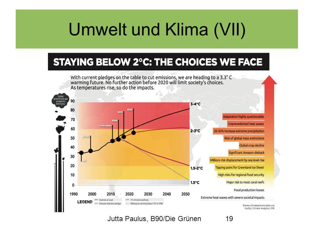 Umwelt und Klima (VII) Jutta Paulus, B90/Die Grünen