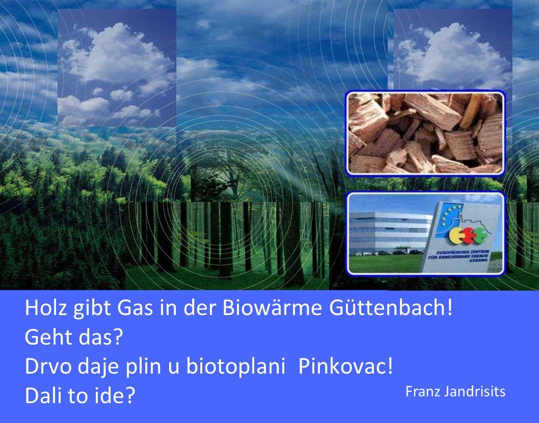 Holz gibt Gas in der Biowärme Güttenbach. Geht das