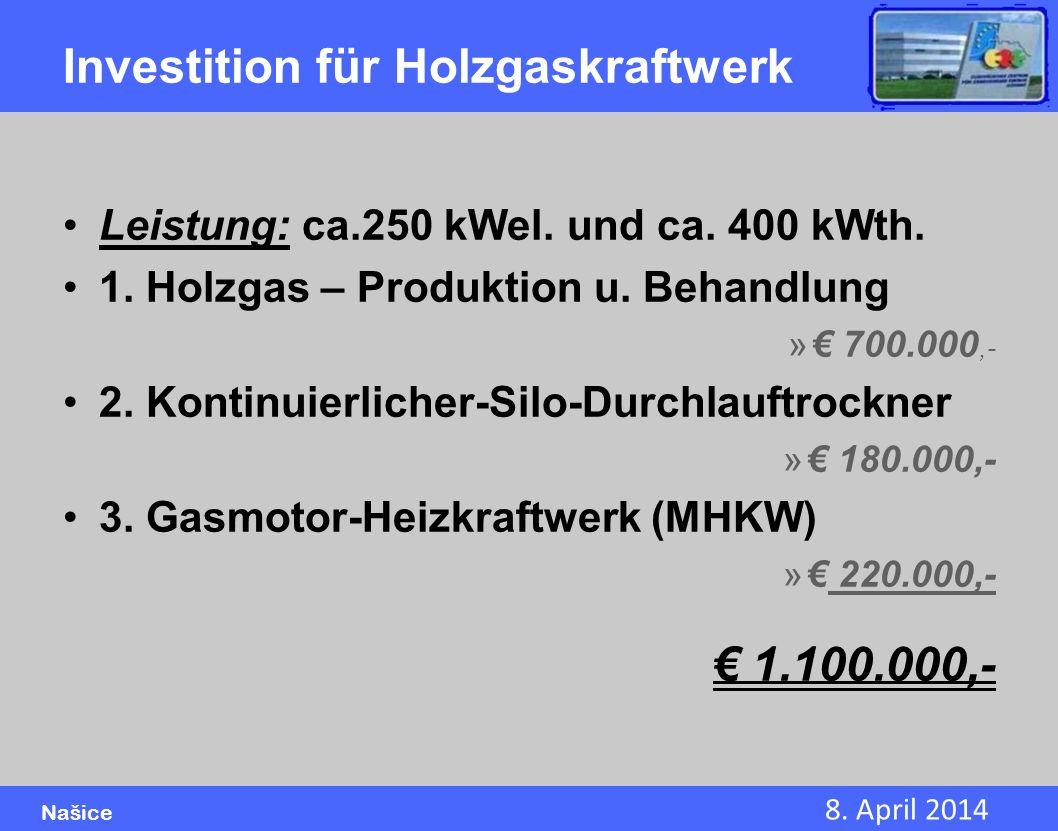 Investition für Holzgaskraftwerk