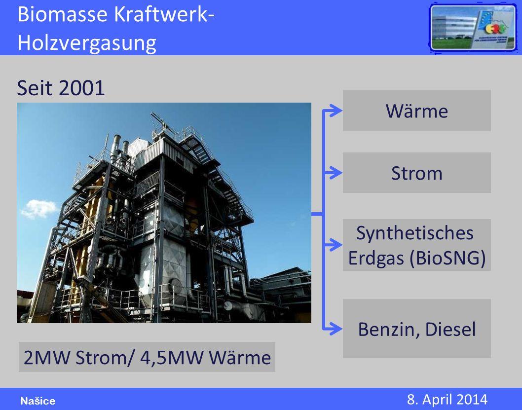 Biomasse Kraftwerk-Holzvergasung