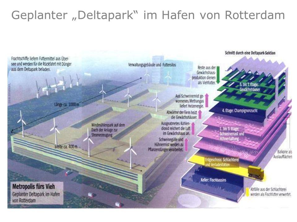 """Geplanter """"Deltapark im Hafen von Rotterdam"""
