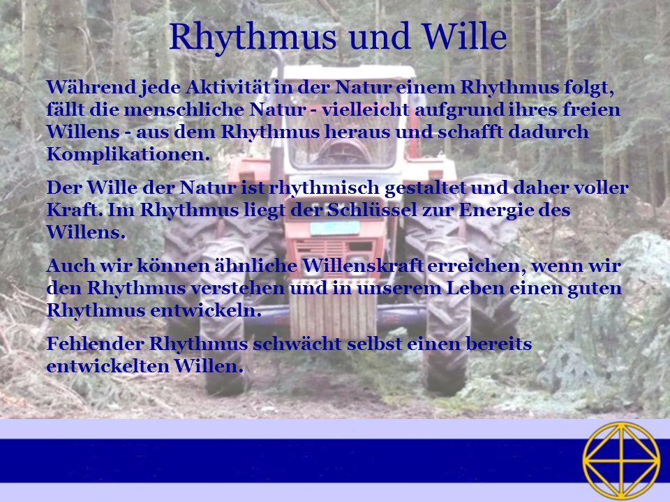 Rhythmus und Wille