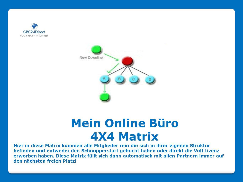 Mein Online Büro 4X4 Matrix Hier in diese Matrix kommen alle Mitglieder rein die sich in ihrer eigenen Struktur befinden und entweder den Schnupperstart gebucht haben oder direkt die Voll Lizenz erworben haben.