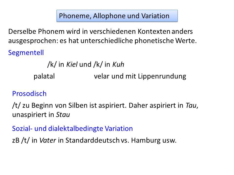 Phoneme, Allophone und Variation