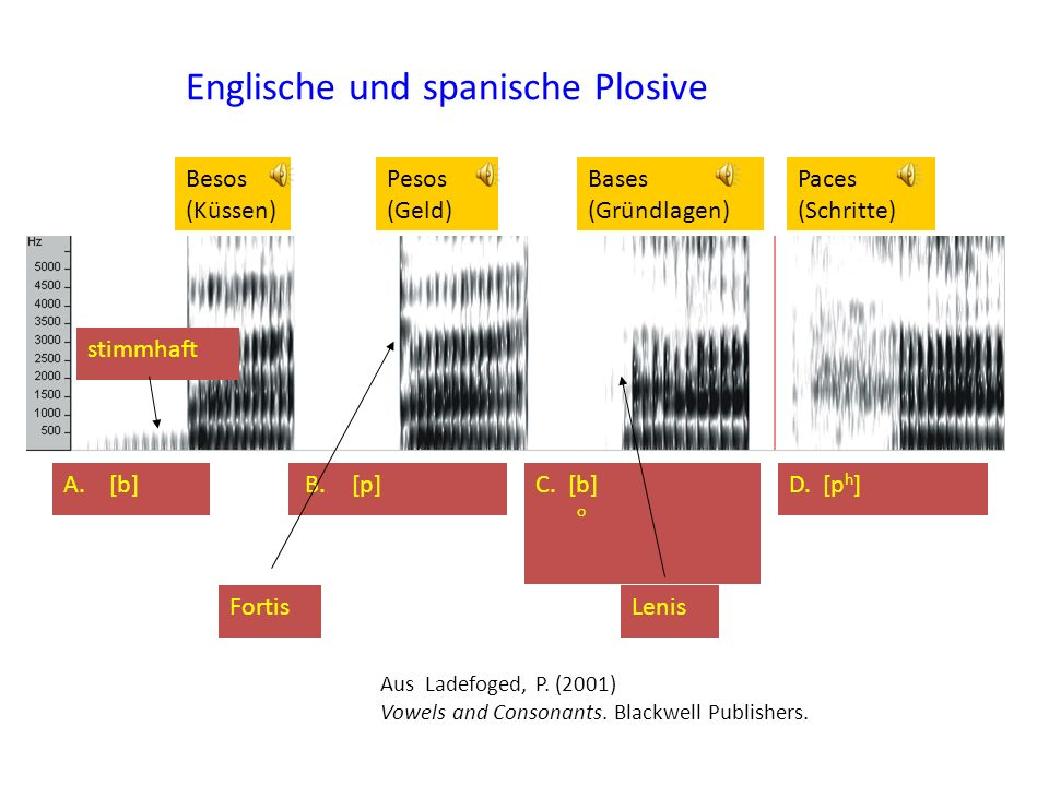 Englische und spanische Plosive