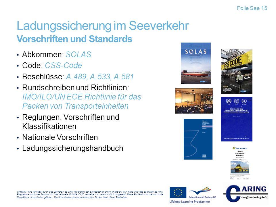 Ladungssicherung im Seeverkehr Vorschriften und Standards