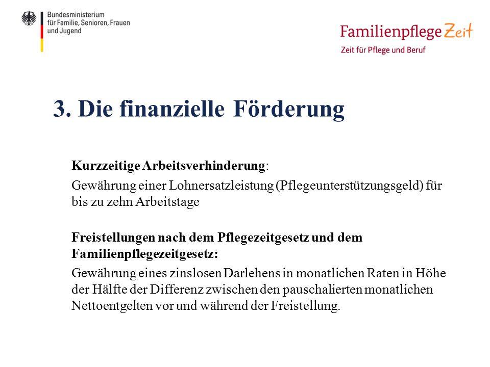 3. Die finanzielle Förderung