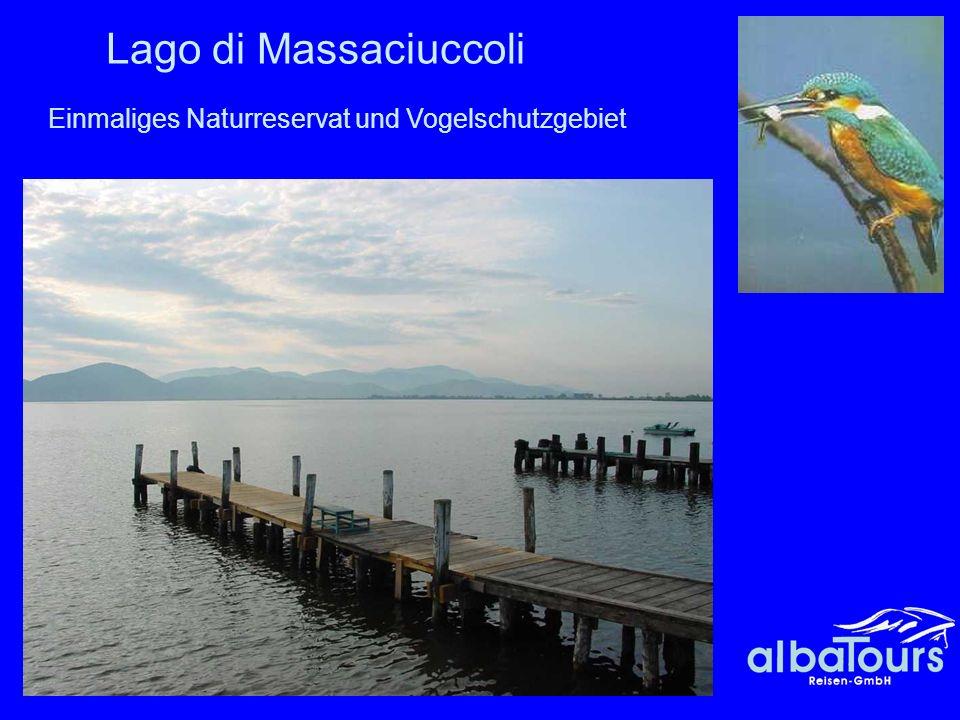 Lago di Massaciuccoli Einmaliges Naturreservat und Vogelschutzgebiet