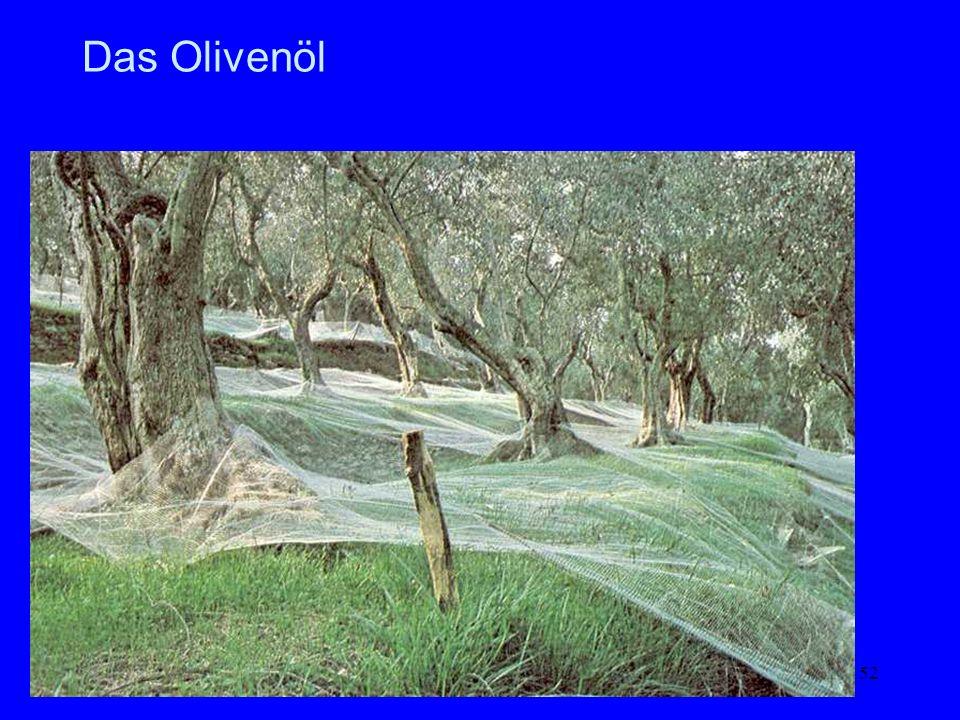 Das Olivenöl