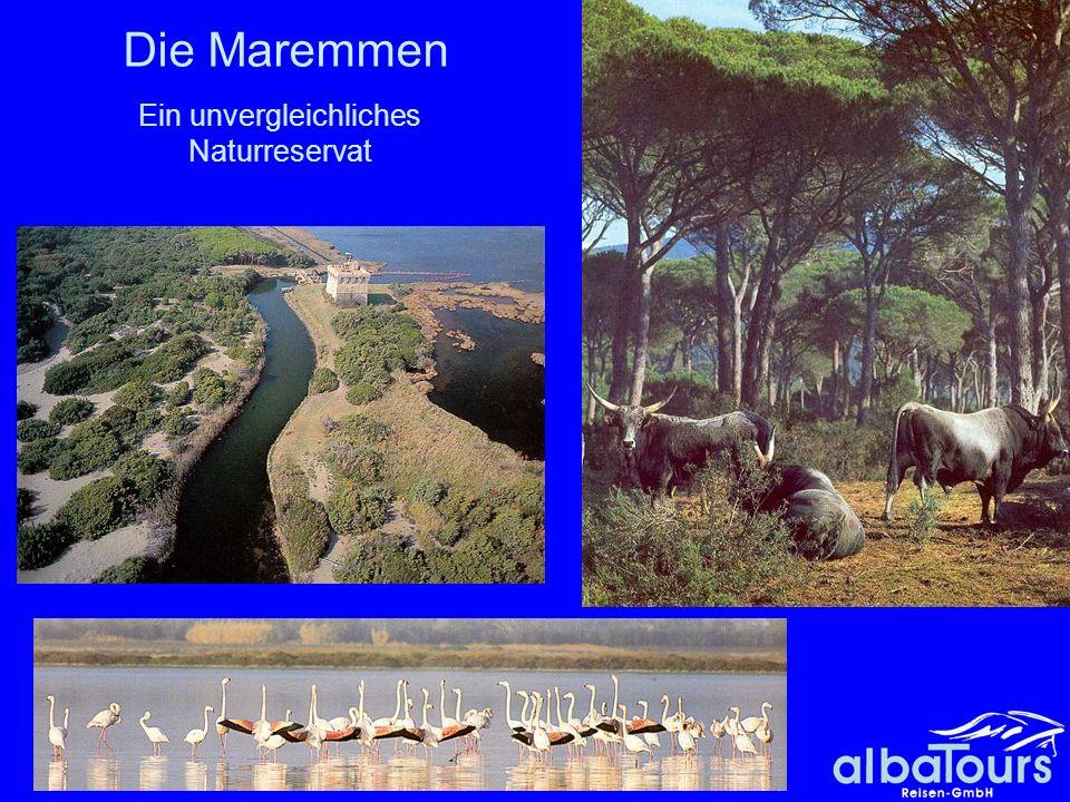 Ein unvergleichliches Naturreservat
