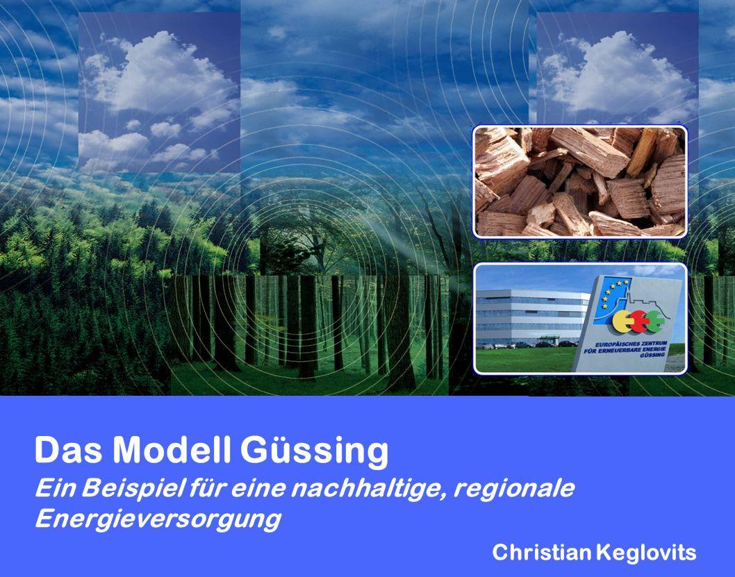 Das Modell Güssing Ein Beispiel für eine nachhaltige, regionale Energieversorgung