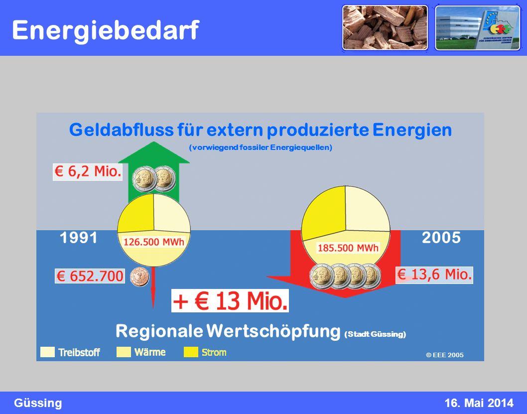 Energiebedarf Geldabfluss für extern produzierte Energien