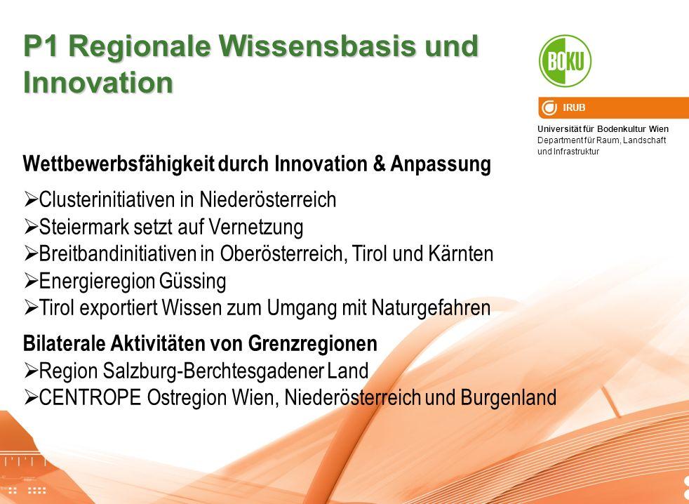 P1 Regionale Wissensbasis und Innovation