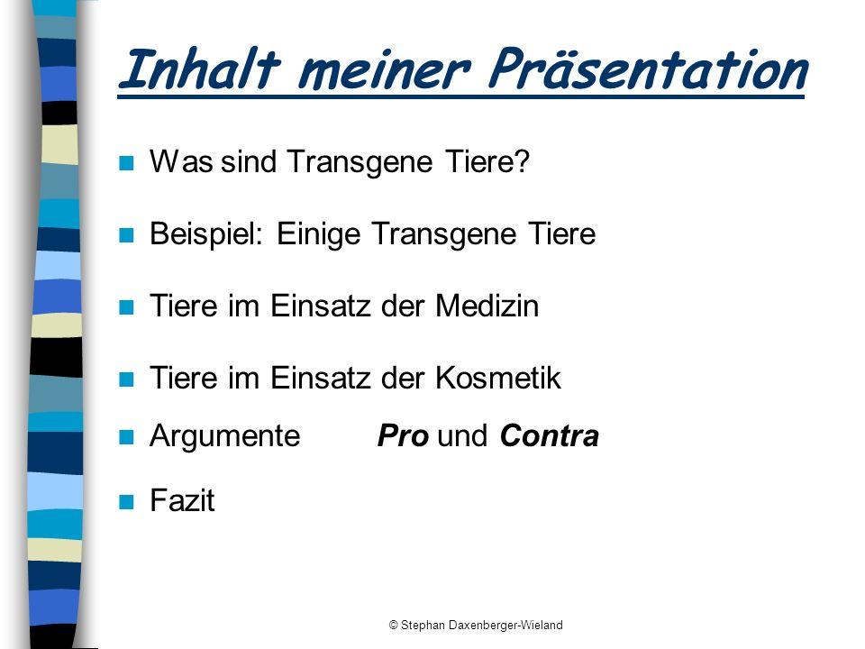 Inhalt meiner Präsentation