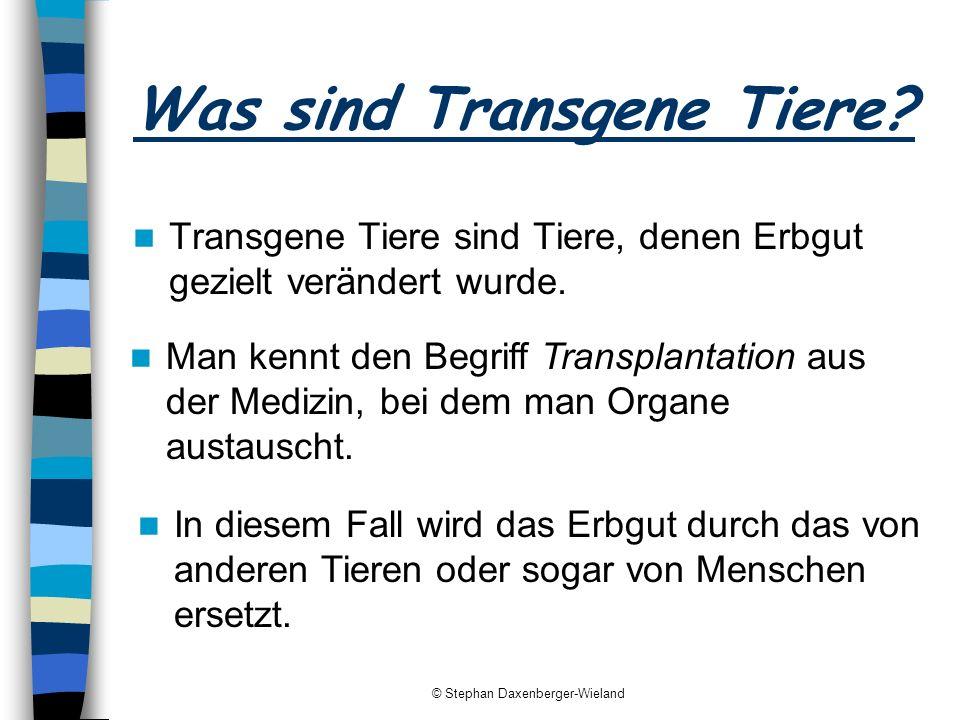 Was sind Transgene Tiere