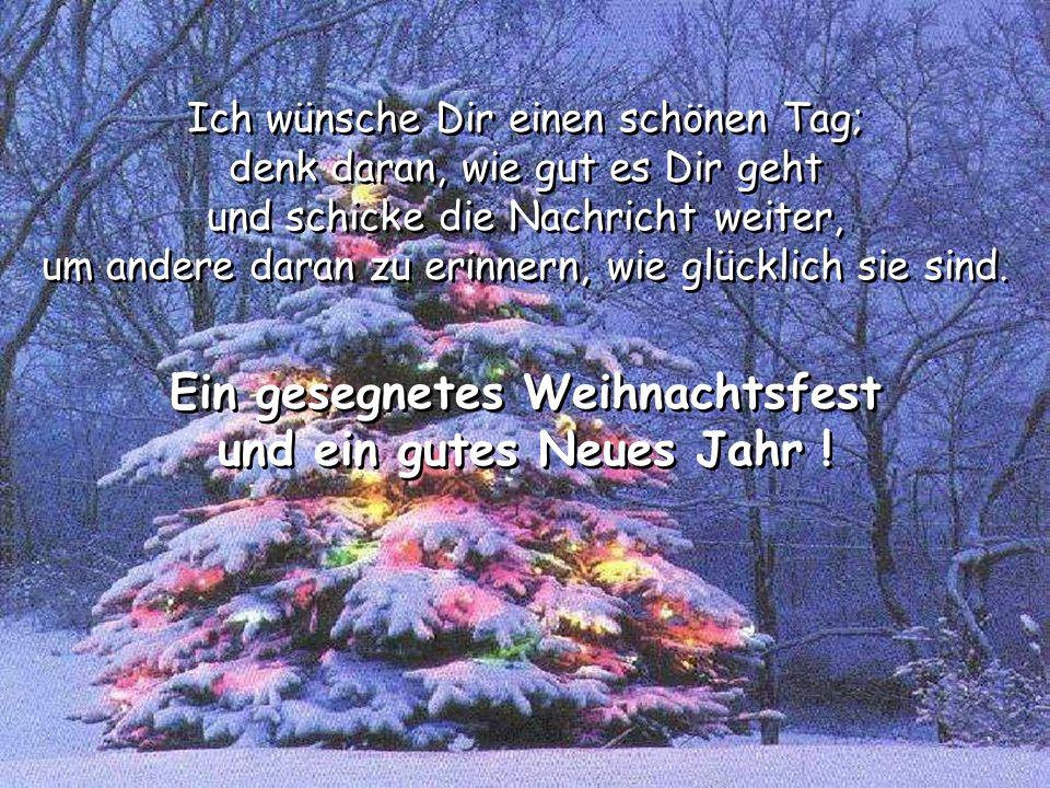 Ein gesegnetes Weihnachtsfest und ein gutes Neues Jahr !