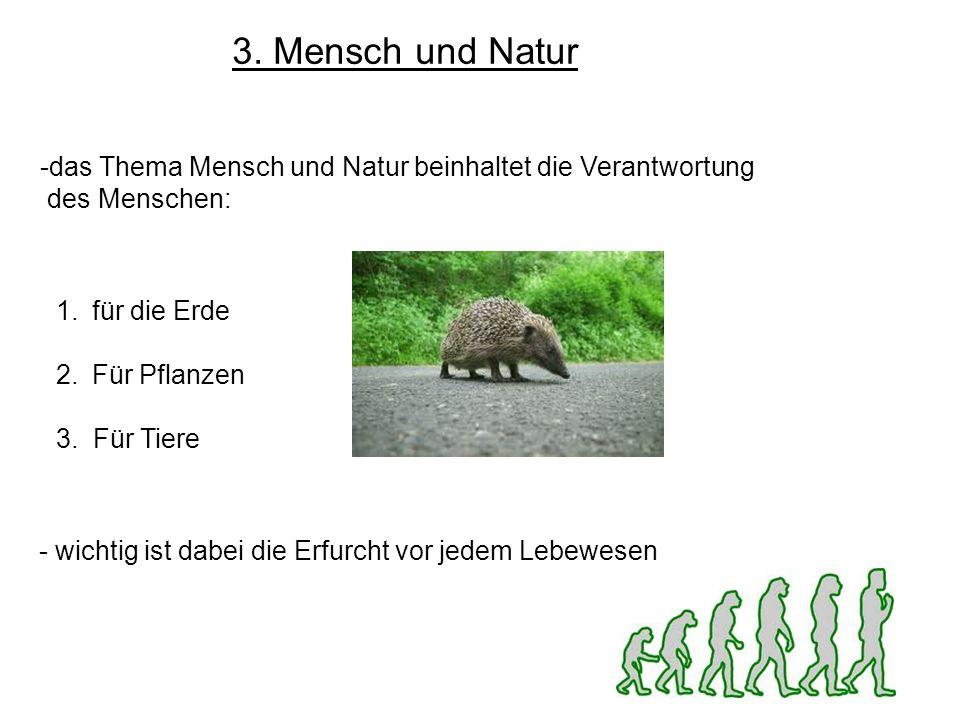 3. Mensch und Natur das Thema Mensch und Natur beinhaltet die Verantwortung. des Menschen: für die Erde.