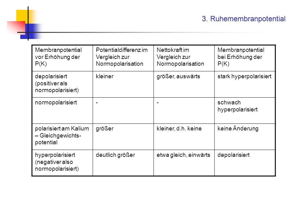 3. Ruhemembranpotential