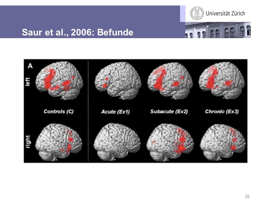 Saur et al., 2006: Befunde