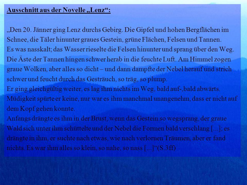 """Ausschnitt aus der Novelle """"Lenz : """"Den 20"""