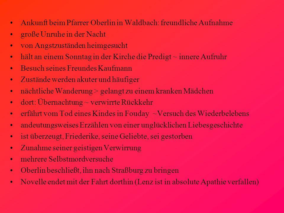 Ankunft beim Pfarrer Oberlin in Waldbach: freundliche Aufnahme