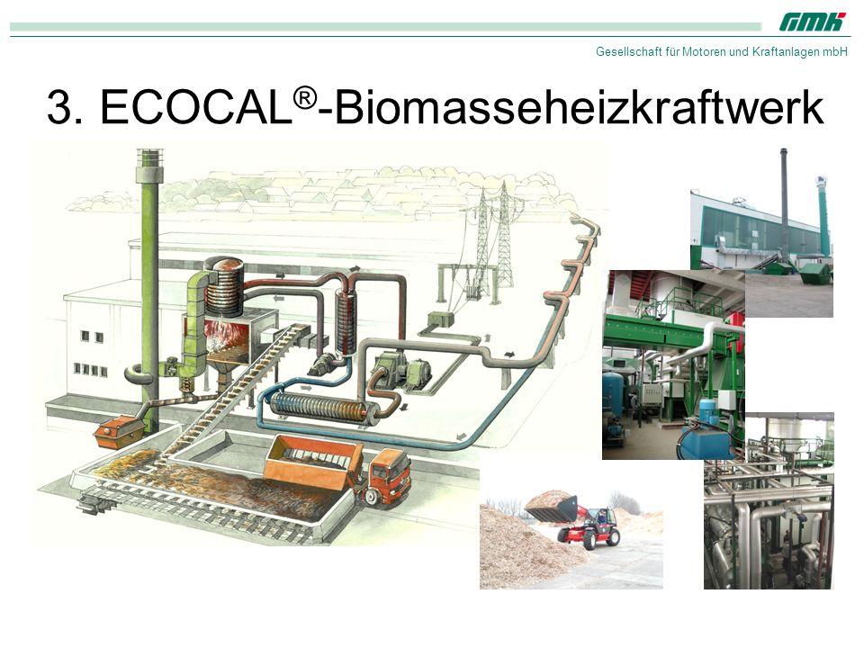 3. ECOCAL®-Biomasseheizkraftwerk
