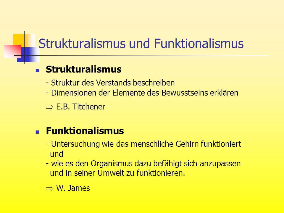 Strukturalismus und Funktionalismus