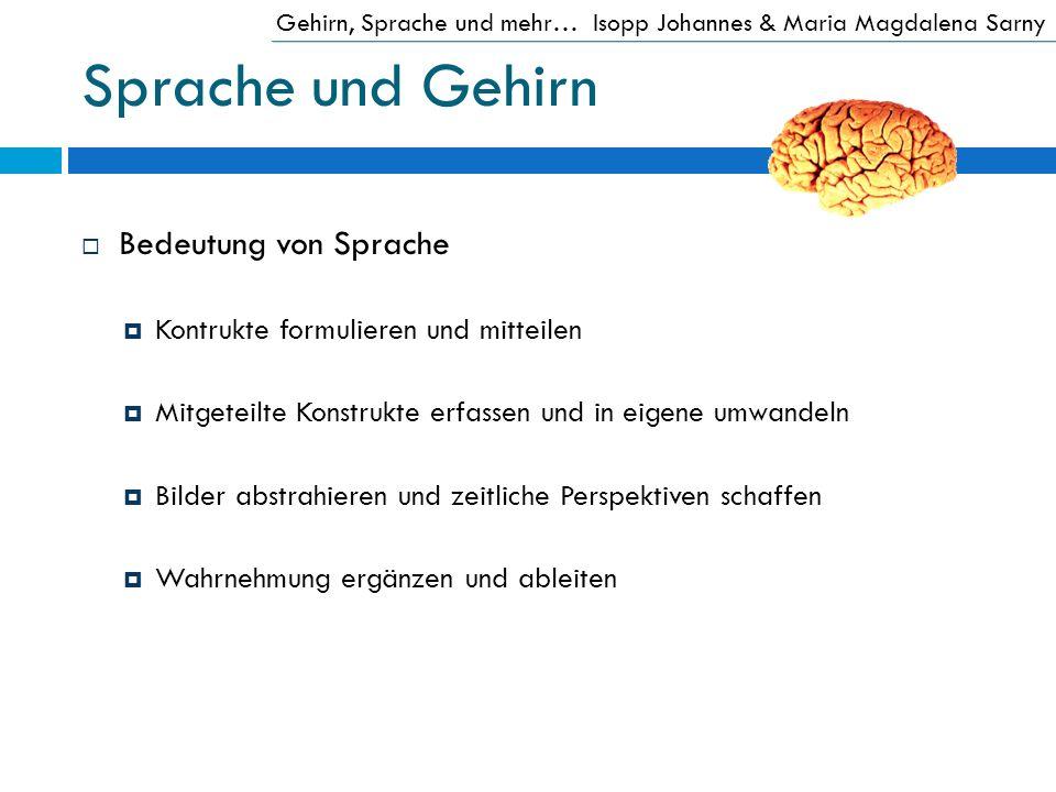 Sprache und Gehirn Bedeutung von Sprache