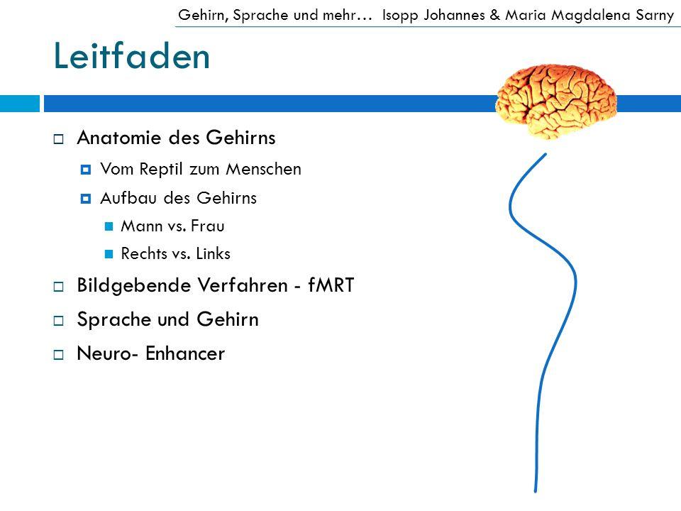 Leitfaden Anatomie des Gehirns Bildgebende Verfahren - fMRT