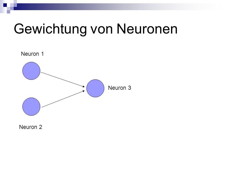 Gewichtung von Neuronen