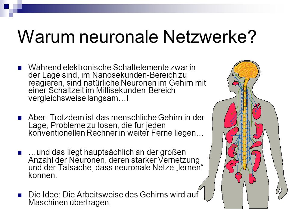 Warum neuronale Netzwerke