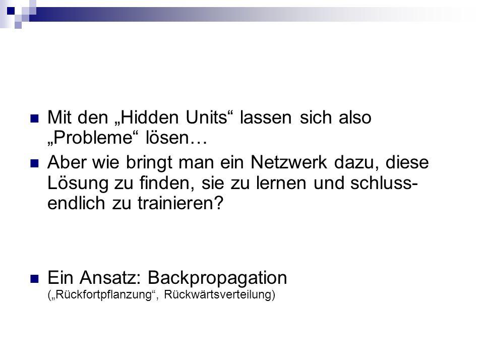 """Mit den """"Hidden Units lassen sich also """"Probleme lösen…"""