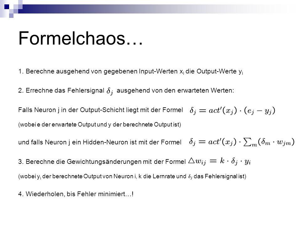 Formelchaos… 1. Berechne ausgehend von gegebenen Input-Werten xi die Output-Werte yi.