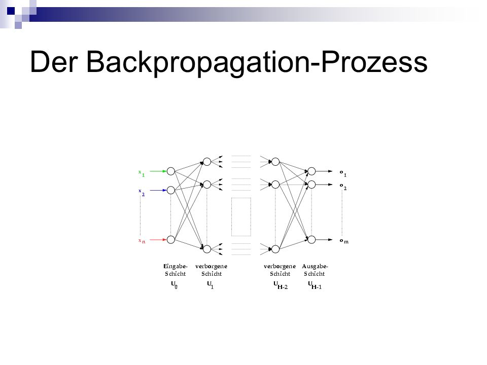 Der Backpropagation-Prozess
