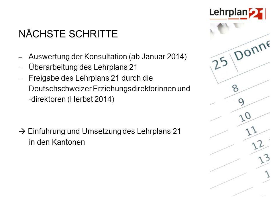 Nächste Schritte Auswertung der Konsultation (ab Januar 2014)