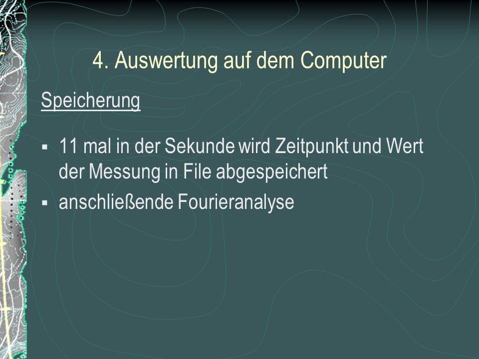 4. Auswertung auf dem Computer